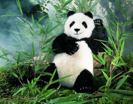 Kösener- Panda LIMITIERT:500St.