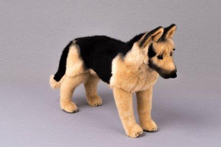 Kösener- Schäferhund