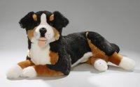 Berner Sennenhund liegend 42 cm
