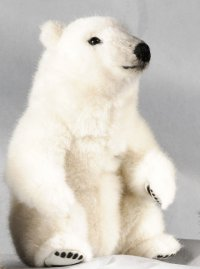 Kösener- Eisbär Minitier