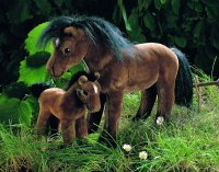 Kösener- Reitpferd braun