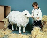 Kösener Schaf 110cm Plüschtier