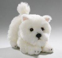 West Highland Terrier Welpe 23 cm