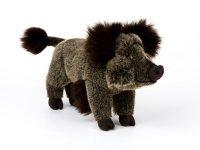 Kösener -Wildschwein Berta
