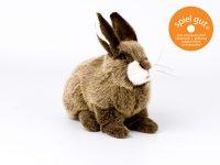 Kösener- Kaninchen- hockend
