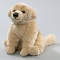 Golden Retriever 30 cm