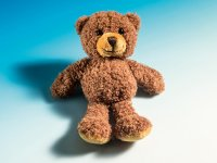 Magnet Teddy