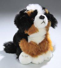 Berner Sennenhund Welpe sitzend 22 cm