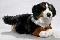Berner Sennenhund liegend 30 cm