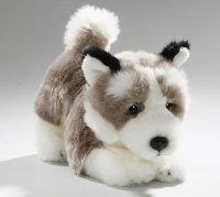 Husky Floppy 23 cm