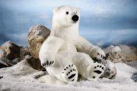 Kösener Eisbär