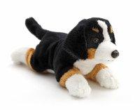 Berner Sennenhund liegend ca. 22 cm