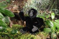 Kösener - Gorilla klein