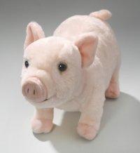 Schwein, Ferkel 26 cm