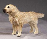 Kösener-Golden Retriever (Minitier)